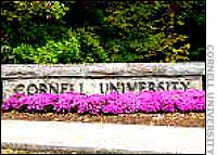 NJ DIVORCE CORNELL